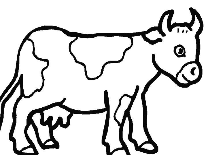 Раскраска Коровка. Скачать Корова.  Распечатать Домашние животные