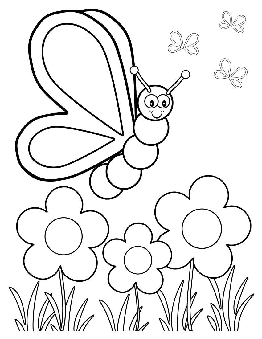 Раскраска  бабочка летит на цветок. Скачать Бабочки.  Распечатать Бабочки