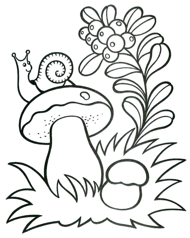 Раскраска Улитка сидит на грибе. Скачать .  Распечатать