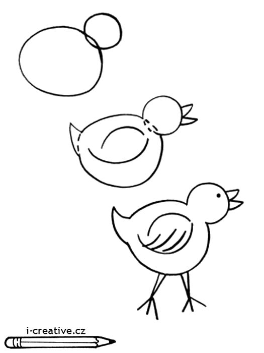Раскраска Как нарисовать цыпленка.. Скачать как нарисовать.  Распечатать Учимся рисовать