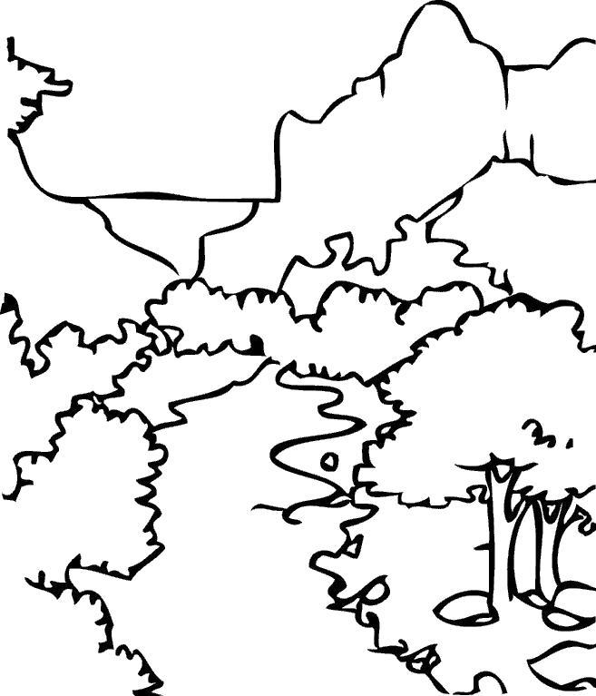 Раскраска Летний парк. Скачать .  Распечатать