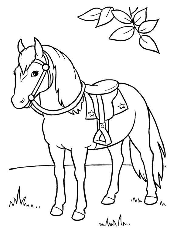 Раскраска  конь с седлом. Скачать .  Распечатать