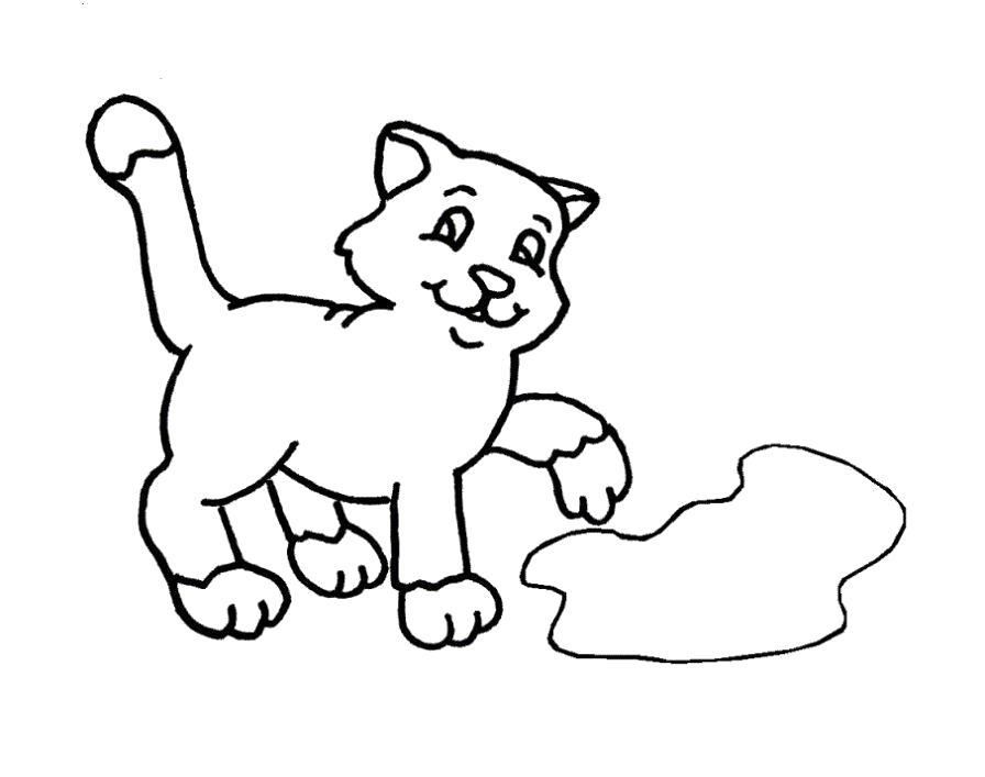 Раскраска  котенок у лужицы. Скачать Котенок.  Распечатать Домашние животные