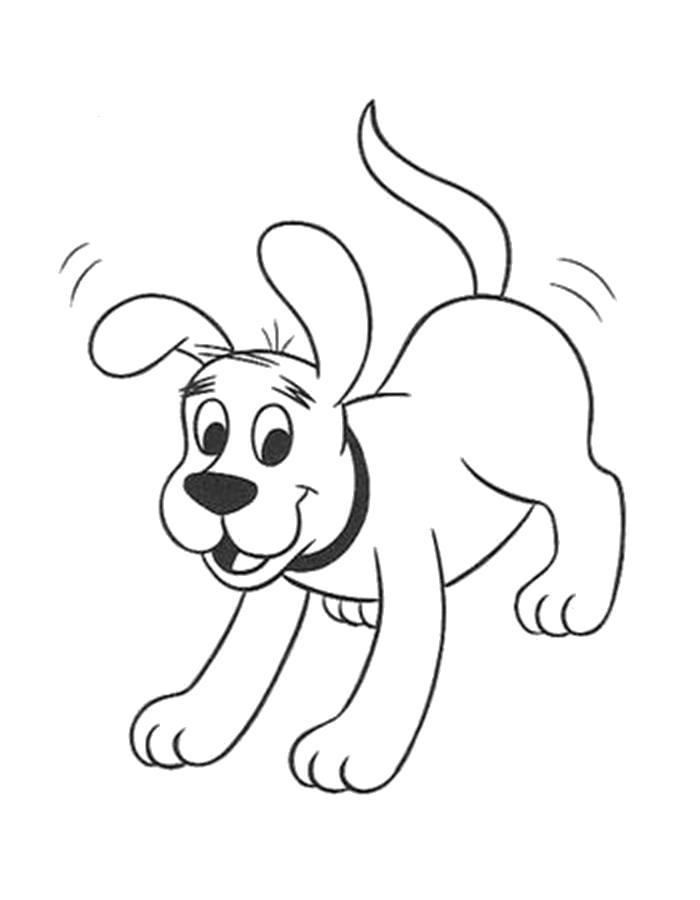 Раскраска  щенок, собака бежит. Скачать Щенок.  Распечатать Щенок