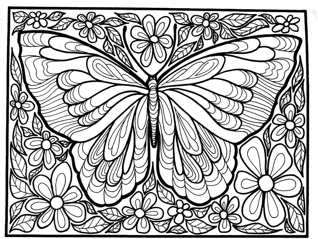 раскраски взрослых раскраска бабочка для взрослых