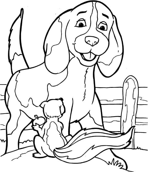 Раскраска  Собаки  собачка, белка, собаки, домашние животные. Скачать Собака.  Распечатать Домашние животные