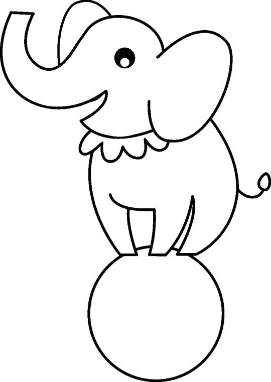 Раскраска Слон на мячике. Скачать цирк.  Распечатать цирк