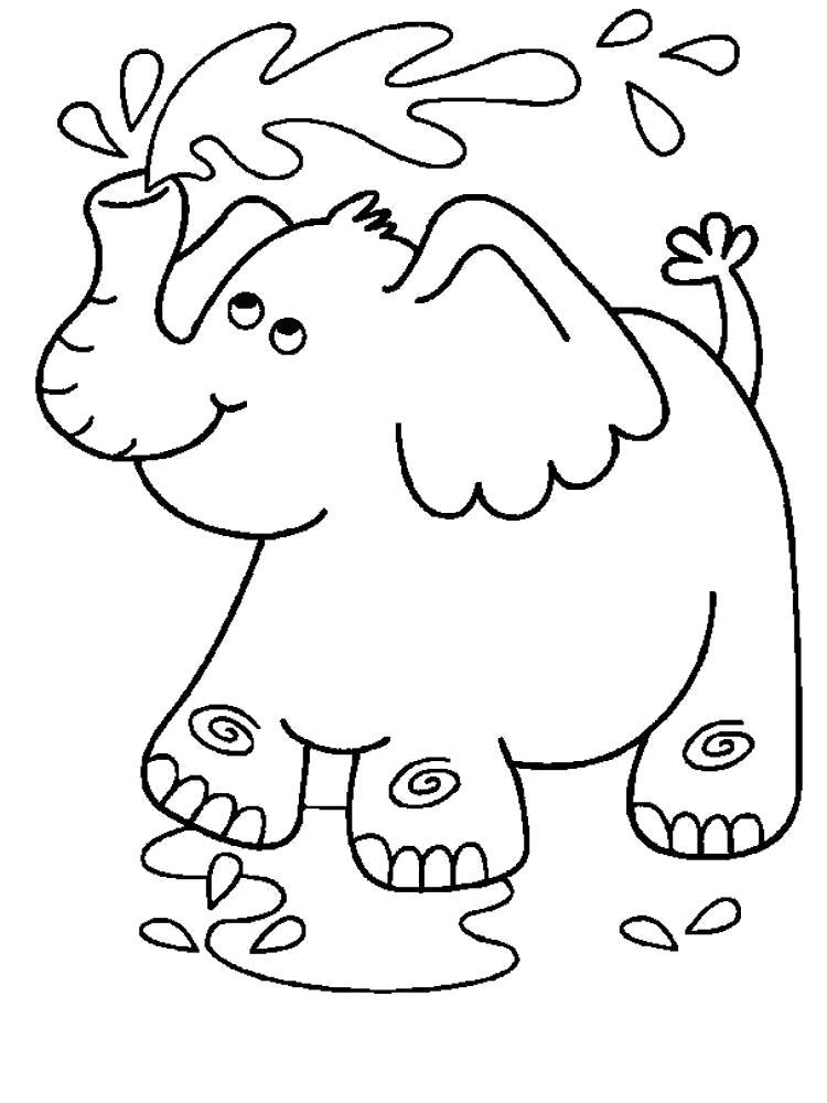 Раскраска  слон поливает себя из хобота. Скачать слон.  Распечатать слон