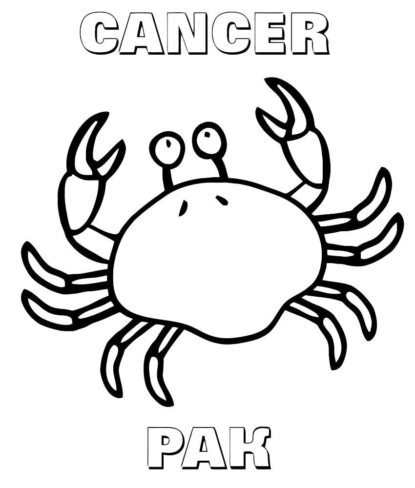 Раскраска Рак. Скачать Знаки Зодиака.  Распечатать Знаки Зодиака