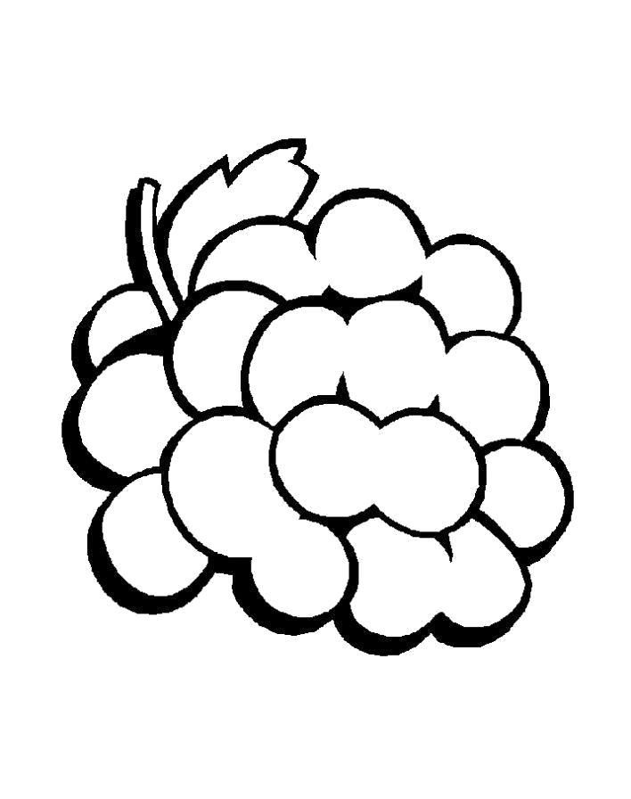 Раскраска Разукрашка виноград ребенку. Скачать виноград.  Распечатать ягоды