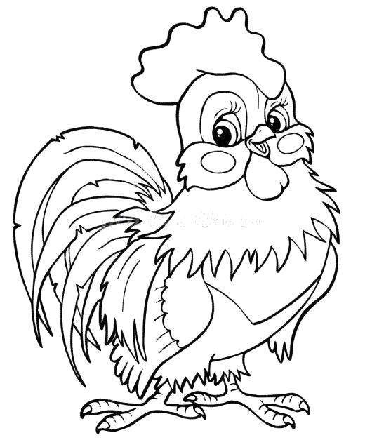 Раскраска Красивый петушок. Скачать Петух.  Распечатать Домашние животные