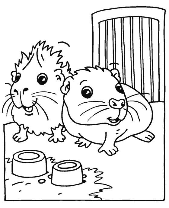 Раскраска Милые хомячки. Скачать Хомяк.  Распечатать Хомяк
