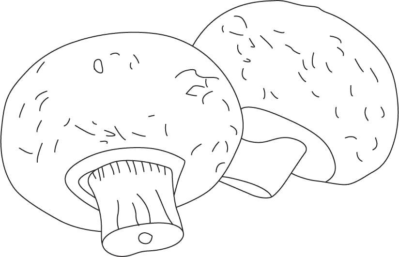 Раскраска  трафареты большие грибы, шаблон для поделок из бумаги. Скачать гриб.  Распечатать растения