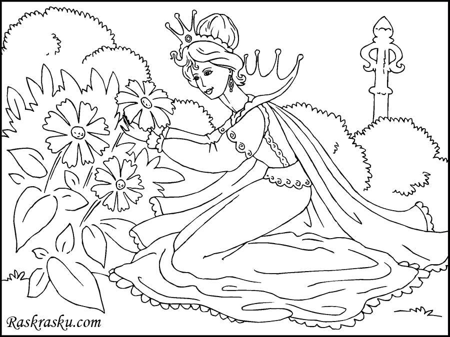 Раскраска Принцесса собирает цветы. Скачать принцесса.  Распечатать принцесса