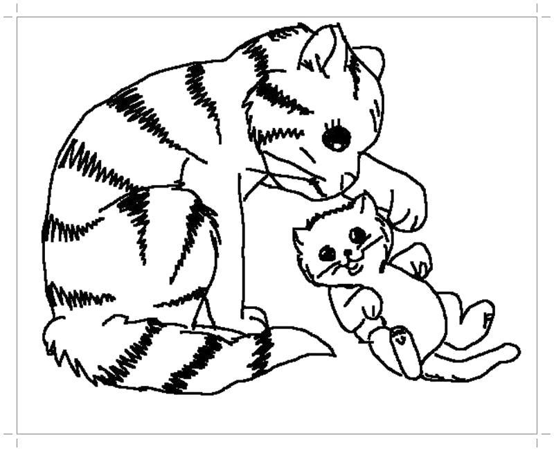 Раскраска  кошки и котята. Скачать кошка, Котенок.  Распечатать Домашние животные