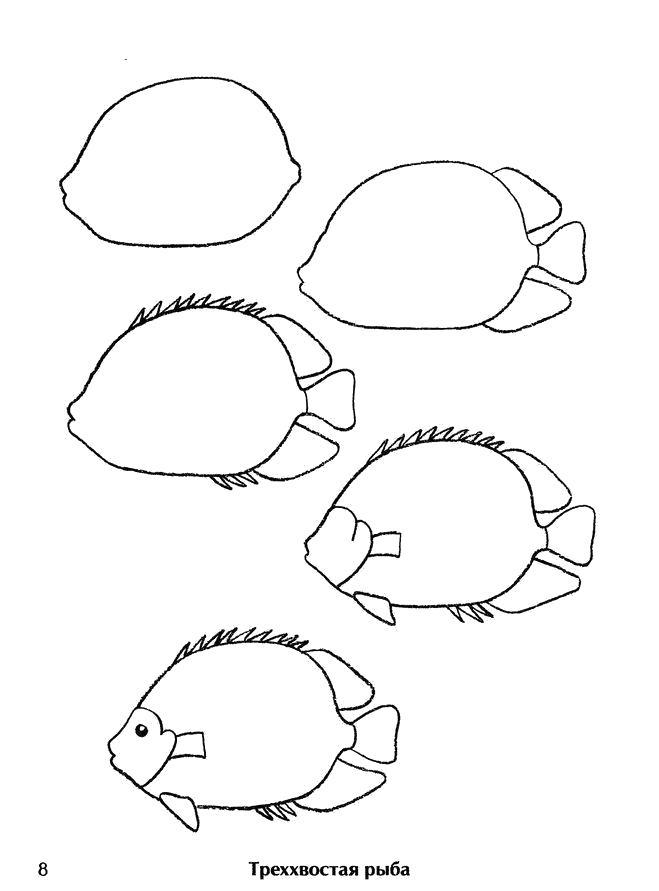 Раскраска Как нарисовать рыбу поэтапно. Скачать Как нарисовать.  Распечатать Как нарисовать
