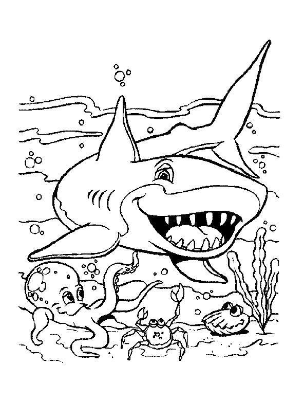 Раскраска  моря, акула, рыба. Скачать .  Распечатать