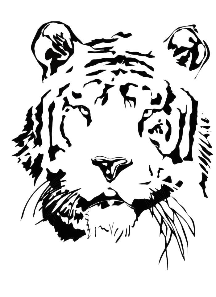 Раскраска Лицо тигра. Скачать Тигр.  Распечатать Дикие животные