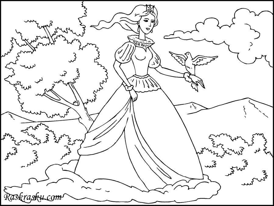 Раскраска Принцесса с птицей. Скачать принцесса.  Распечатать принцесса