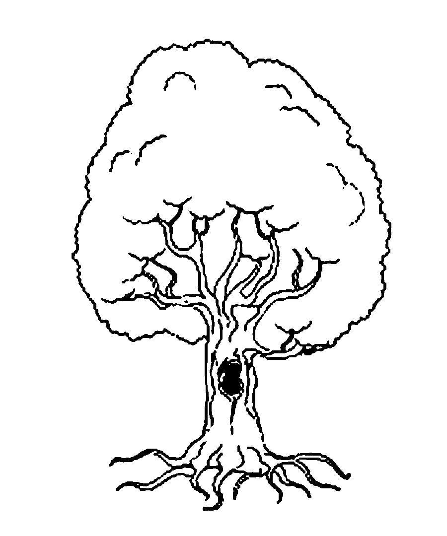 Раскраска  Деревья для вырезания из бумаги дерево. Скачать дерево.  Распечатать растения