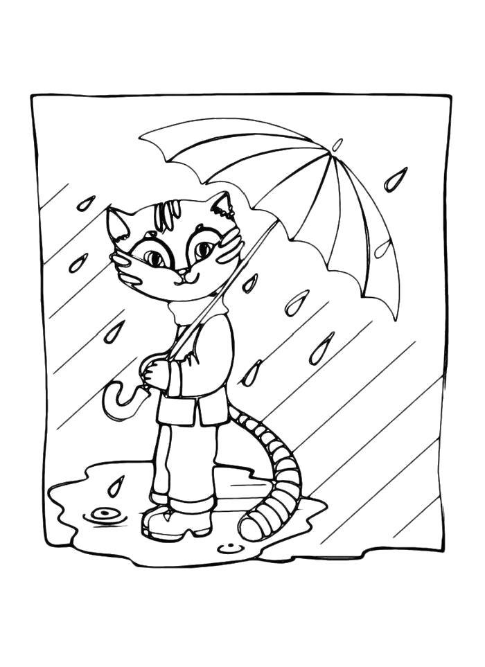 Раскраска  Кошка  под зонтом. Скачать зонт.  Распечатать зонт