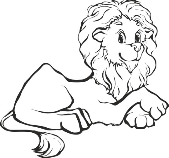 Раскраска Львёнок. Скачать животных.  Распечатать животных