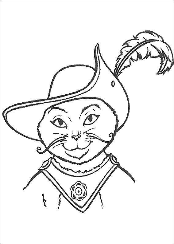 Раскраска кот из мультфильма Шрек. Скачать шрек.  Распечатать шрек