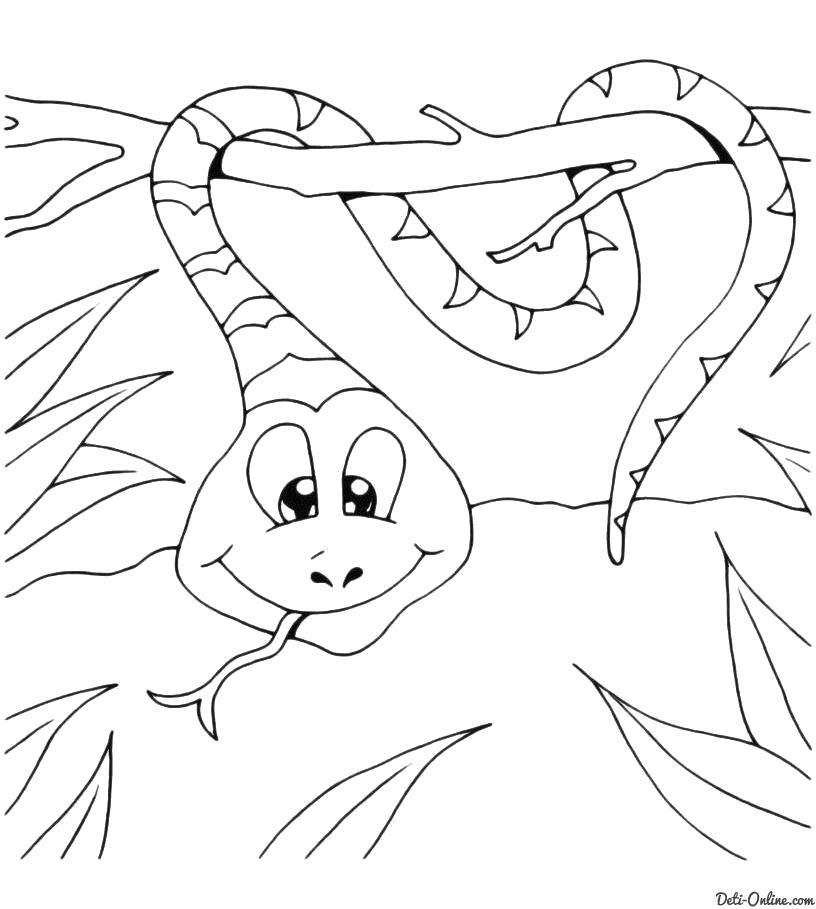 Раскраска  Змея в отличном расположении духа. Скачать Змея.  Распечатать Змея