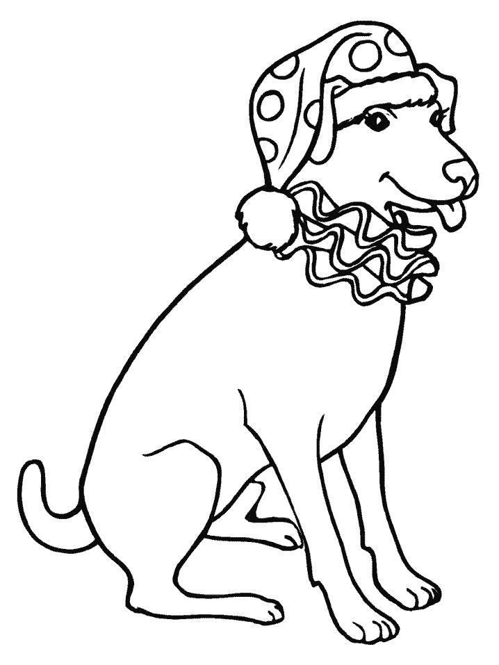 Раскраска  Собака в шапке Деда Мороза. Скачать Собака.  Распечатать Собака