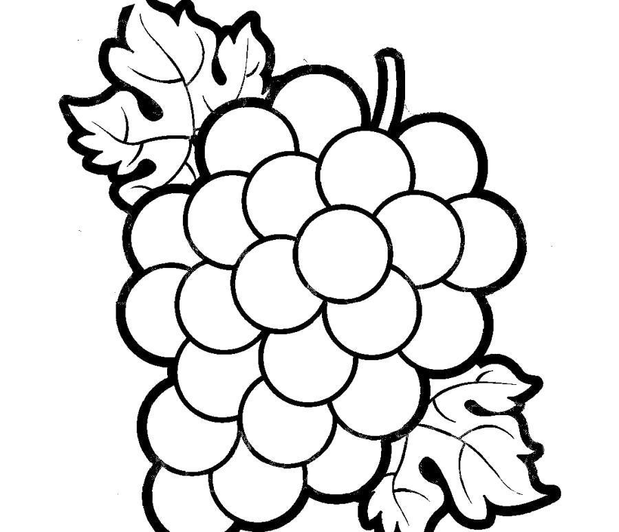 Раскраска Красивый виноград . Скачать .  Распечатать
