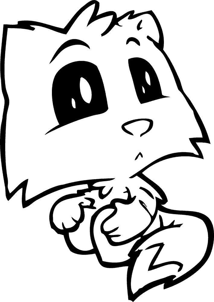Раскраска Милашка котёнок. Скачать .  Распечатать