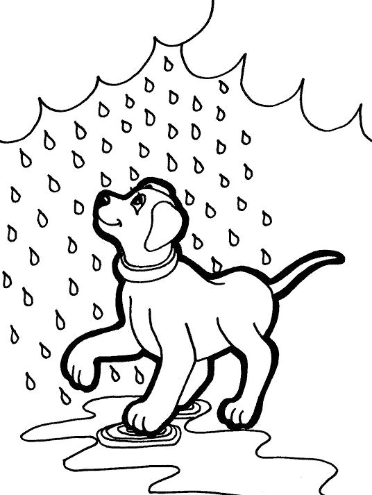 Раскраска Собачка любит дождь. Скачать дождь.  Распечатать дождь