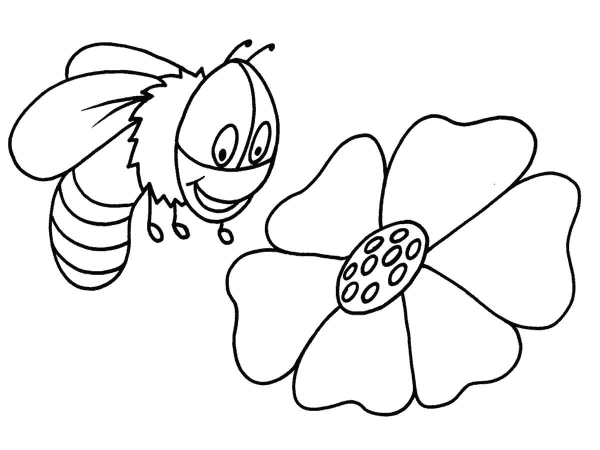 Раскраска пчела рада цветку. Скачать Пчела.  Распечатать Пчела