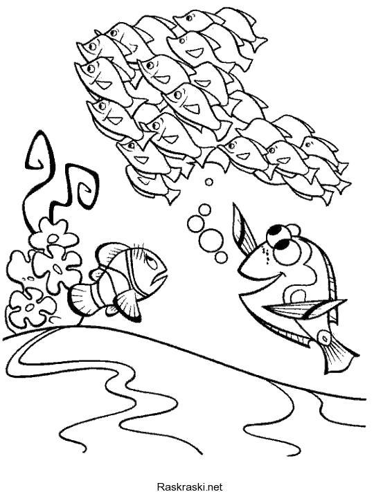 """Раскраска Раскрась героев мультика """"В поисках Немо"""". Скачать в поисках Немо.  Распечатать в поисках Немо"""