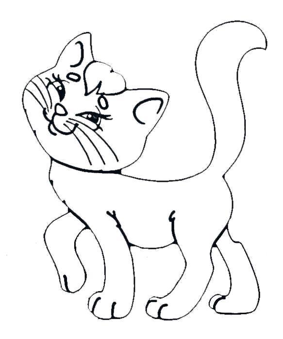 Раскраска  кошки  кошка,  для детей, домашние животные . Скачать кошка.  Распечатать Домашние животные