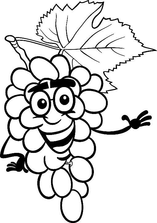 Раскраска Виноград. Скачать виноград.  Распечатать ягоды