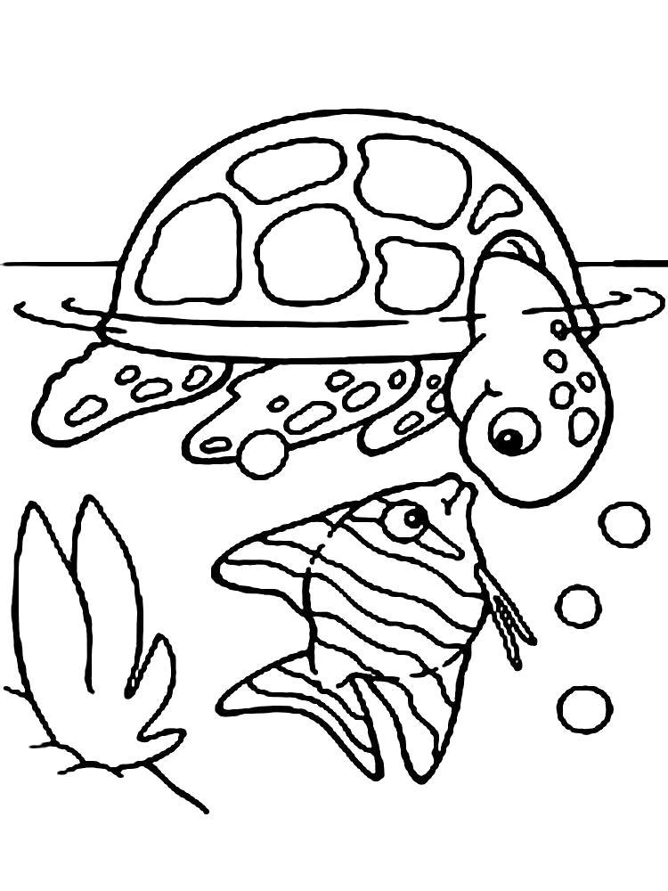 Раскраска Любопытные морские жители. Скачать .  Распечатать