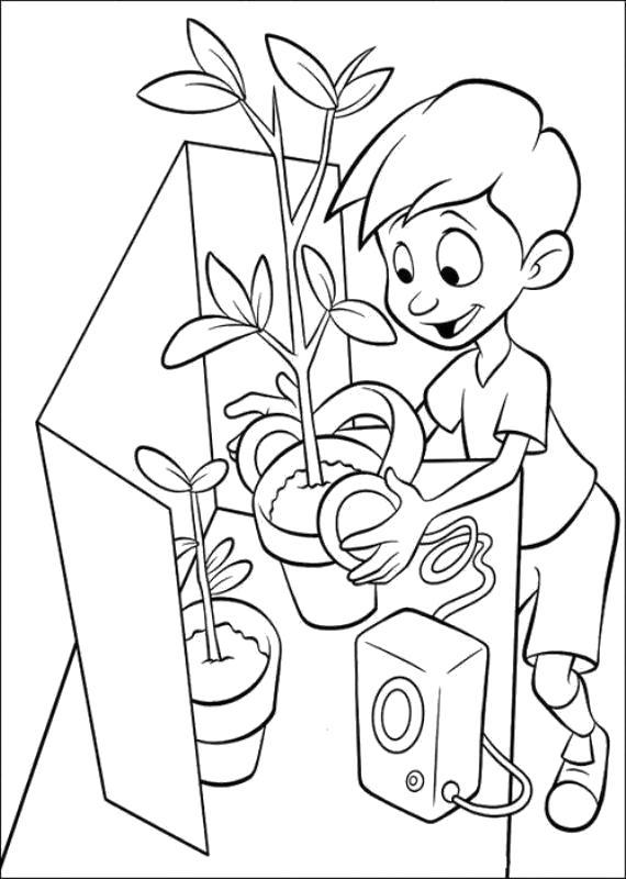 Раскраска мальчик заботится о цветах, мальчик сажает домашние цветы, мальчик ухаживает за цветами. Скачать .  Распечатать