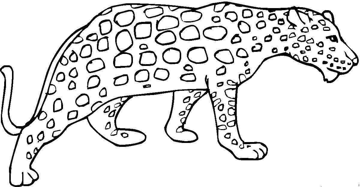 Раскраска Леопард. Скачать животных.  Распечатать животных