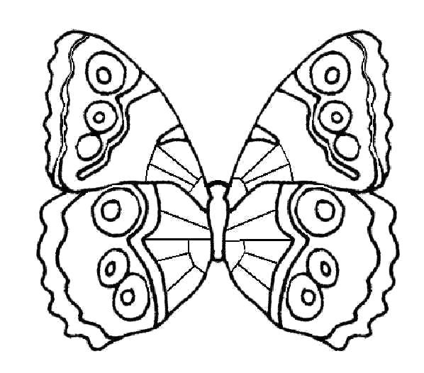 Раскраска Бабочка. Скачать .  Распечатать