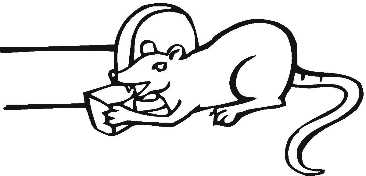 Раскраска Мышка и сыр. Скачать .  Распечатать