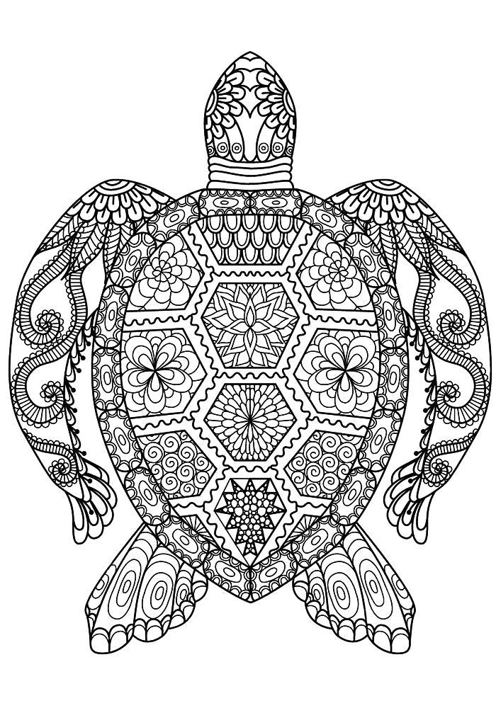 Раскраска Разукрашки антистресс черепаха. Скачать Черепаха.  Распечатать Дикие животные