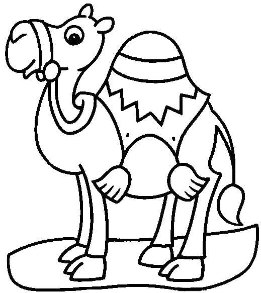 Раскраска одногорбый верблюд. Скачать Верблюд.  Распечатать Дикие животные