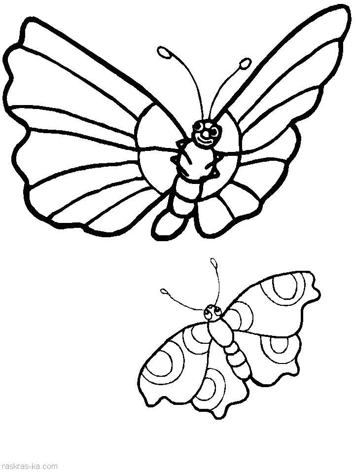 Раскраска Раскрасить бабочек. Скачать Бабочки.  Распечатать Бабочки
