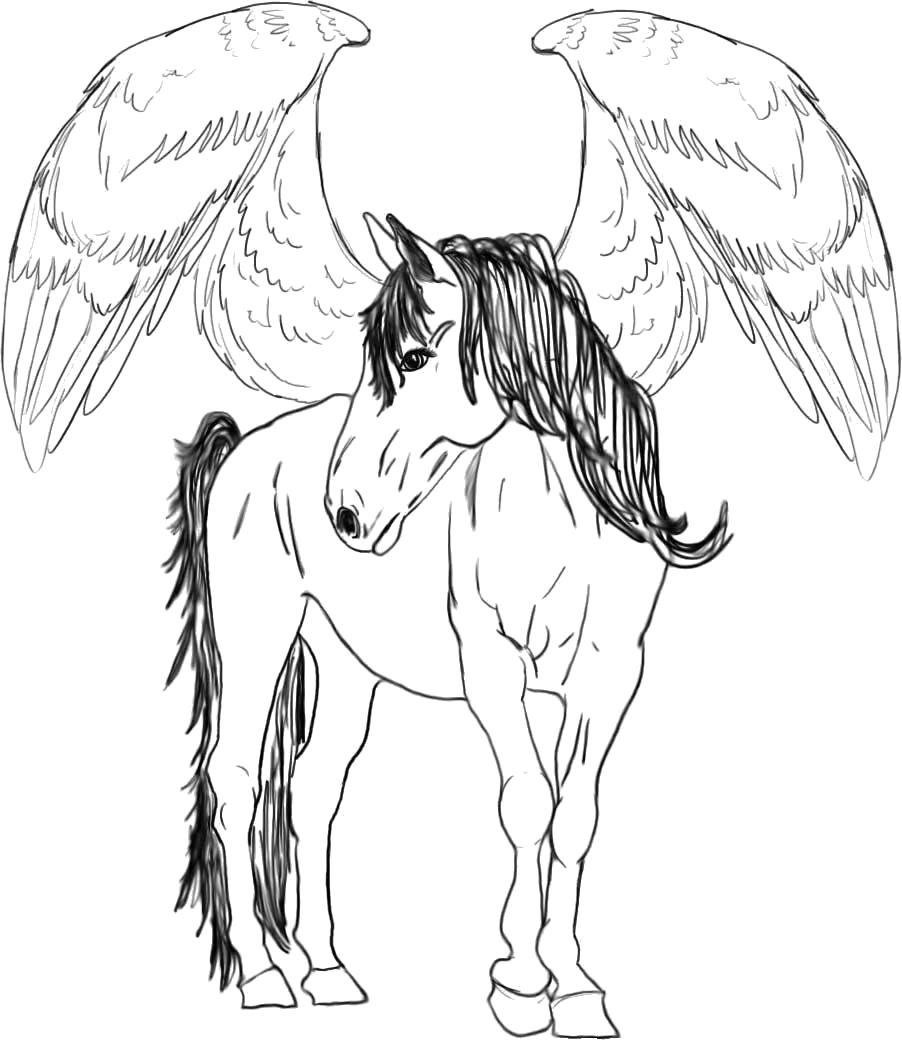 Раскраска Пегас. Скачать Лошадь.  Распечатать Лошадь