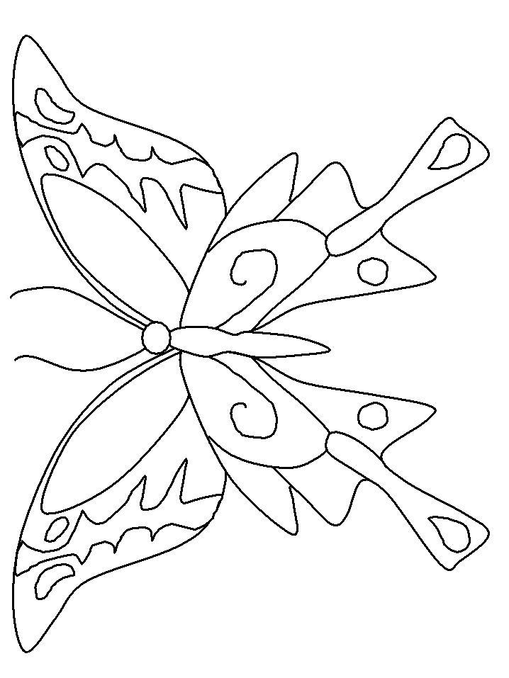 Раскраска  Красивая бабочка с узорчатыми крыльями. Скачать бабочка.  Распечатать бабочка