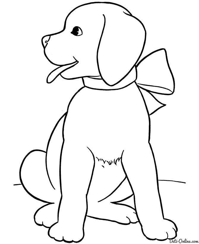 Раскраска Нарядная собака. Скачать Щенок, Собака.  Распечатать Домашние животные