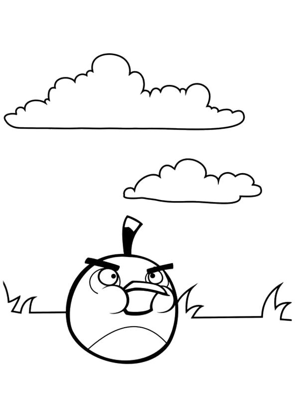 Раскраска Angry Birds. Скачать энгри бердс.  Распечатать энгри бердс