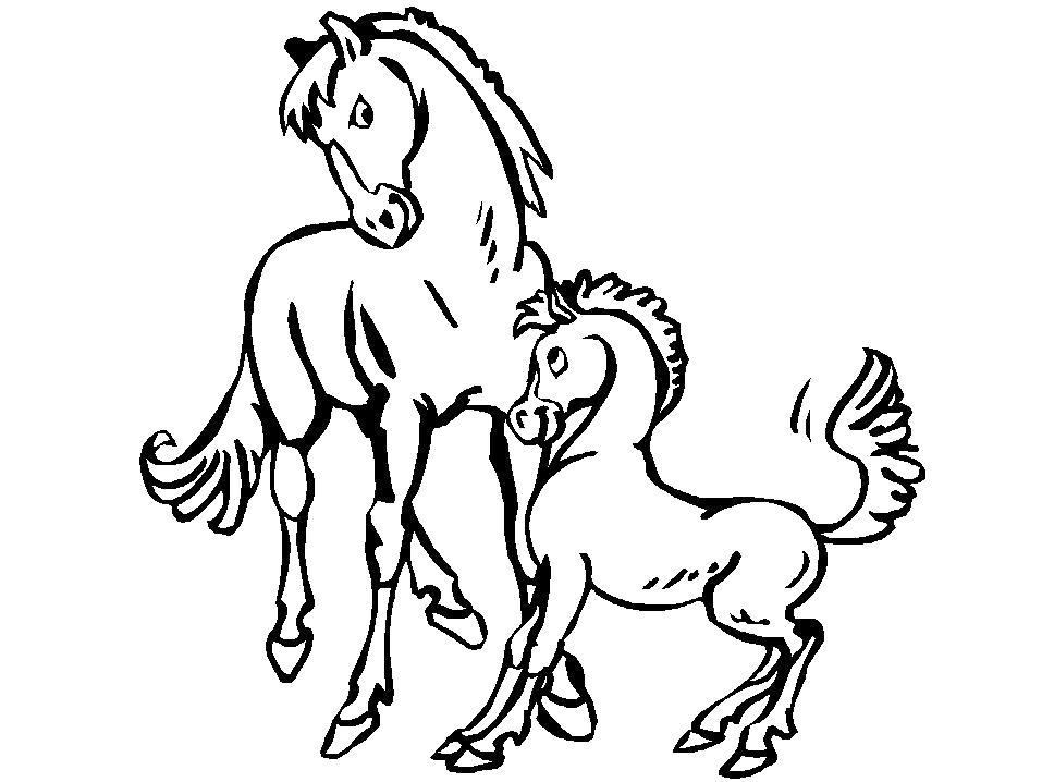 Раскраска Лошадь и маленький жеребенок. Скачать Лошадь.  Распечатать Домашние животные