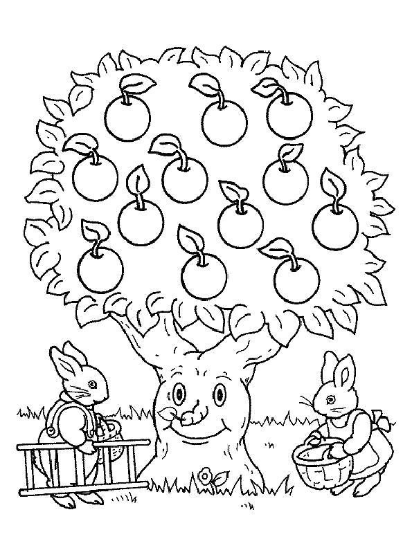 Раскраска  деревья  яблоня, деревья, зайчики . Скачать деревья.  Распечатать деревья